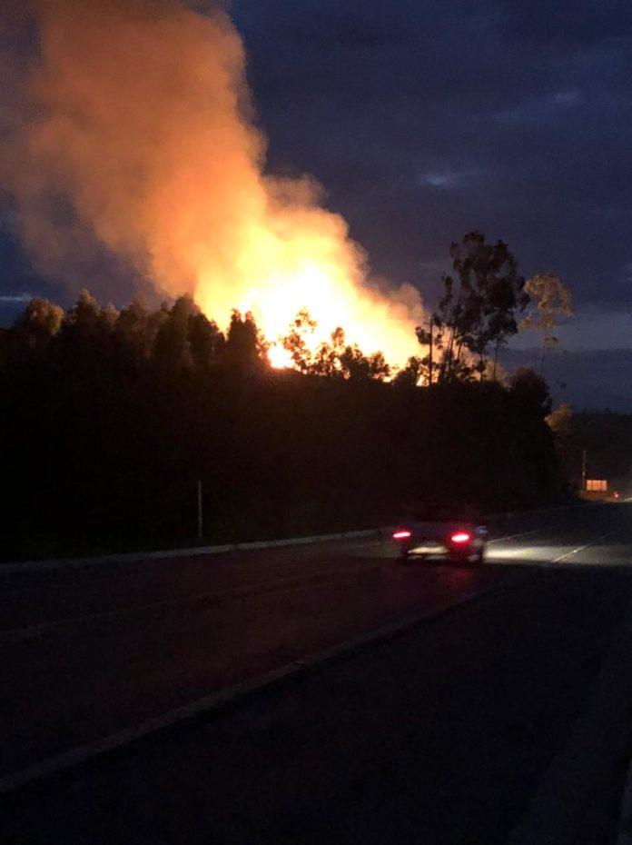 Corpo de Bombeiros e Defesa Civil combatem grande incêndio em pastagem no interior de Nova Venécia