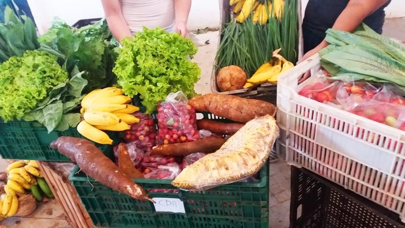 Programa Compra Direta de Alimentos (CDA) é finalista do Prêmio Inoves