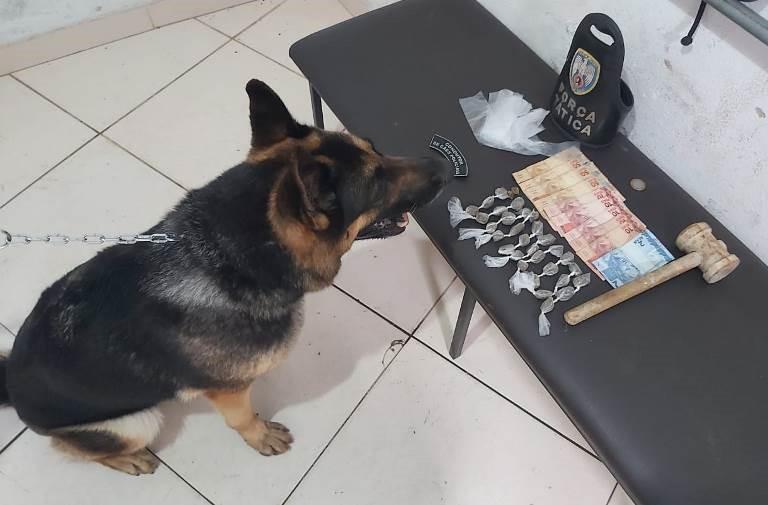 Polícia Militar apreende drogas com auxílio de cão farejador em Nova Venécia