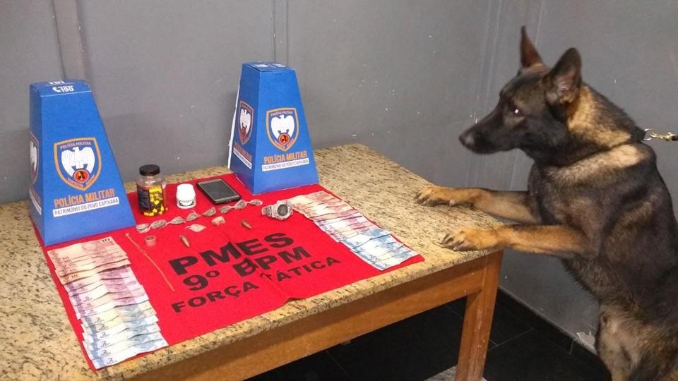 PM usa cão farejador para prender suspeito de traficar drogas em Cachoeiro