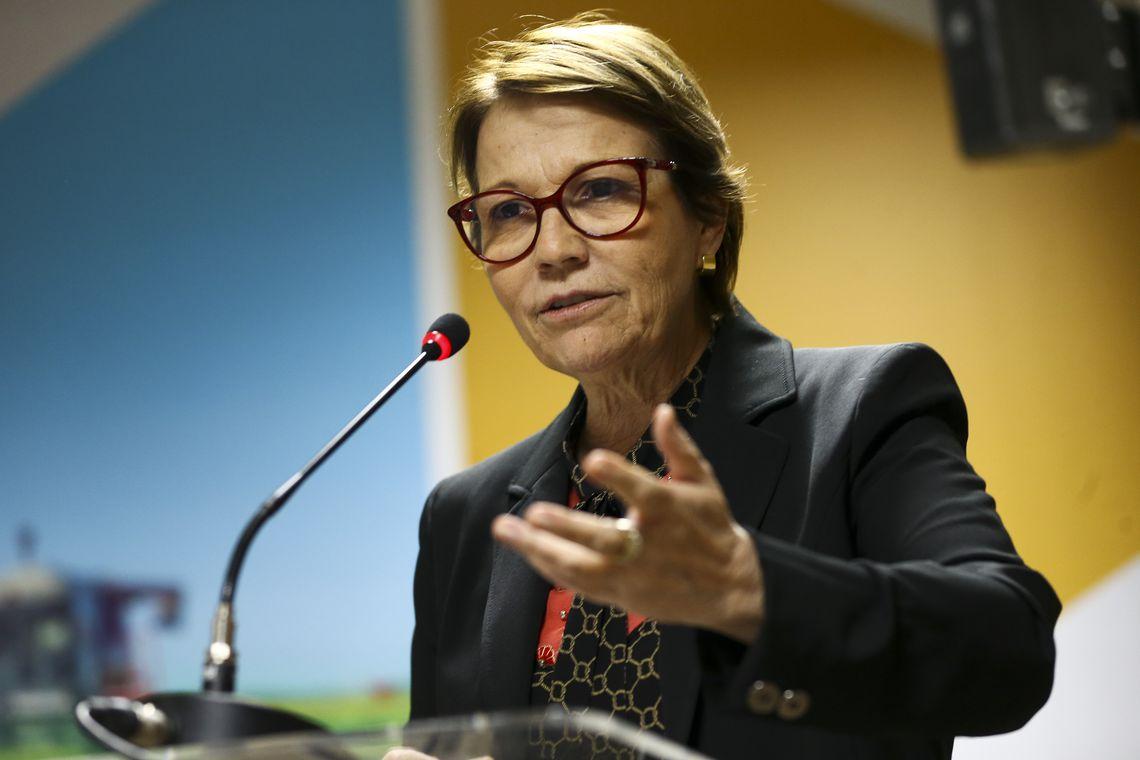 Ministra mostra experiência do Brasil com agricultura de baixo carbon